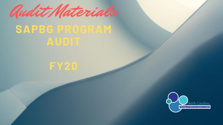 Preparing for the FY 20 SAPBG Program Audit